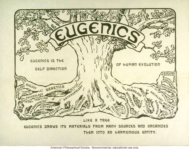 eugenics diagram american philosophical society
